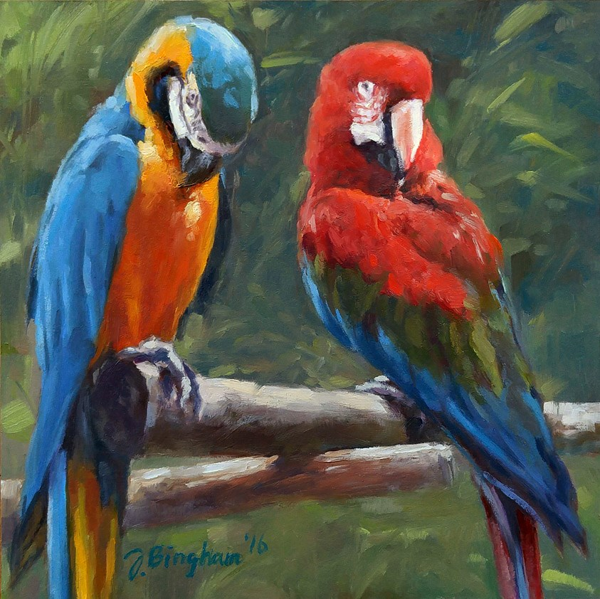 """Macaws"" original fine art by Joanna Bingham"