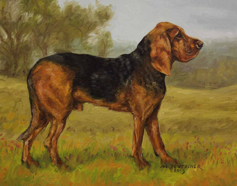 """Bloodhound"" original fine art by Sue Deutscher"