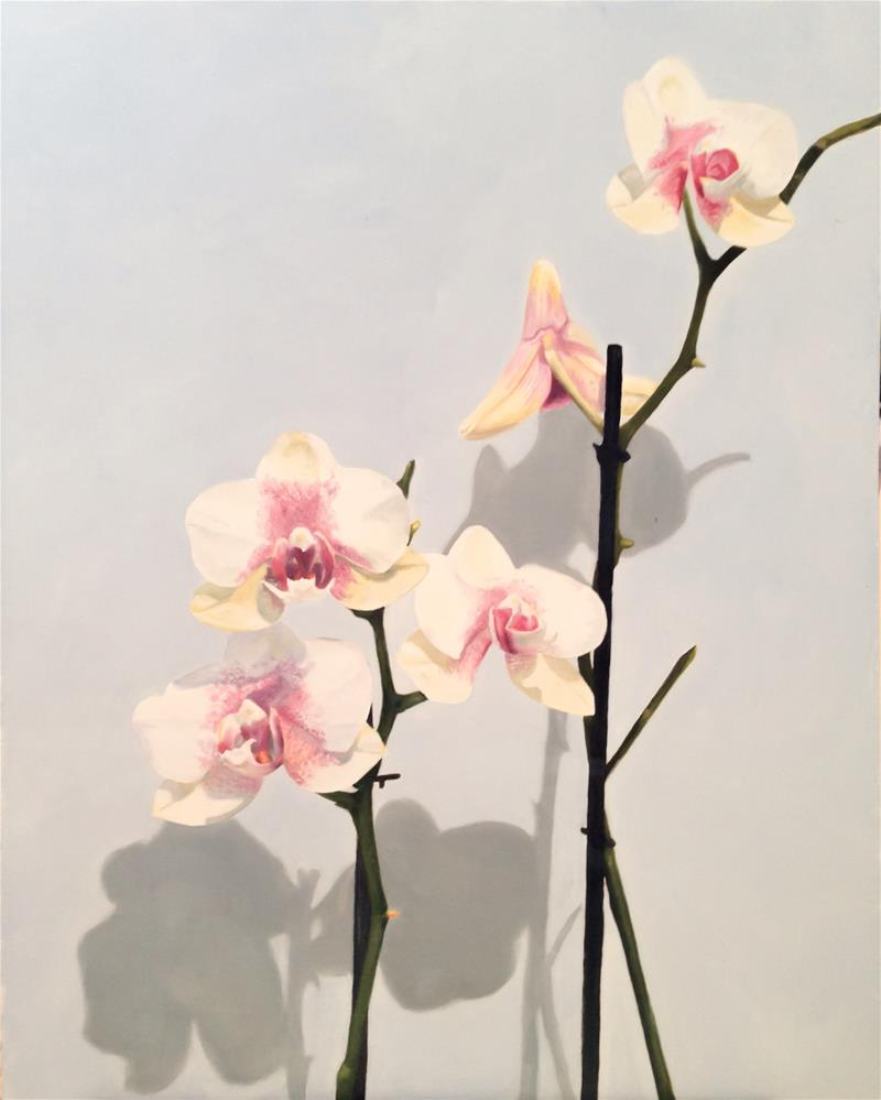 """Orchids"" original fine art by James Coates"