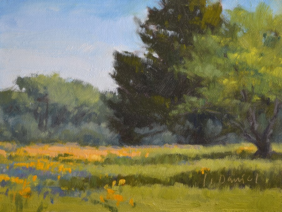 """Field of Wildflowers"" original fine art by Laurel Daniel"