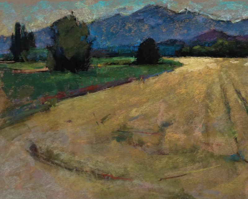 """Skagit Valley Pastel Plein Air"" original fine art by Patti McNutt"