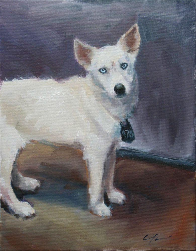"""Shelter Dog"" original fine art by Clair Hartmann"