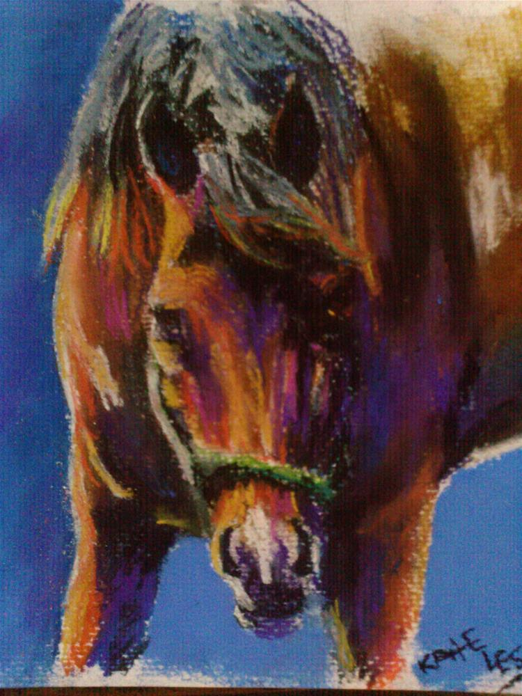 """Pastel study- horse"" original fine art by Kate Less-Madsen"