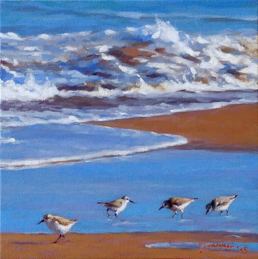 """Sanderlings"" original fine art by Joanna Bingham"