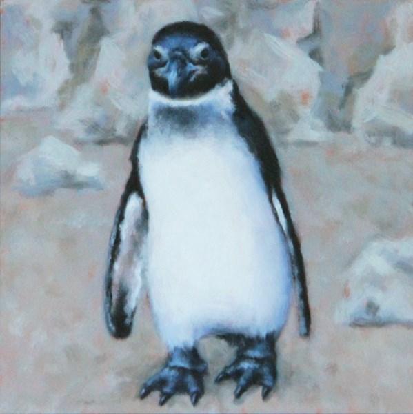"""""""African Penguin Study"""" original fine art by Sarah Becktel"""