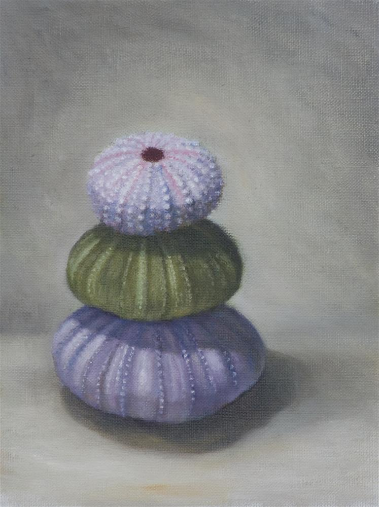 """Stacked Sea Urchins"" original fine art by Melissa  Imossi"