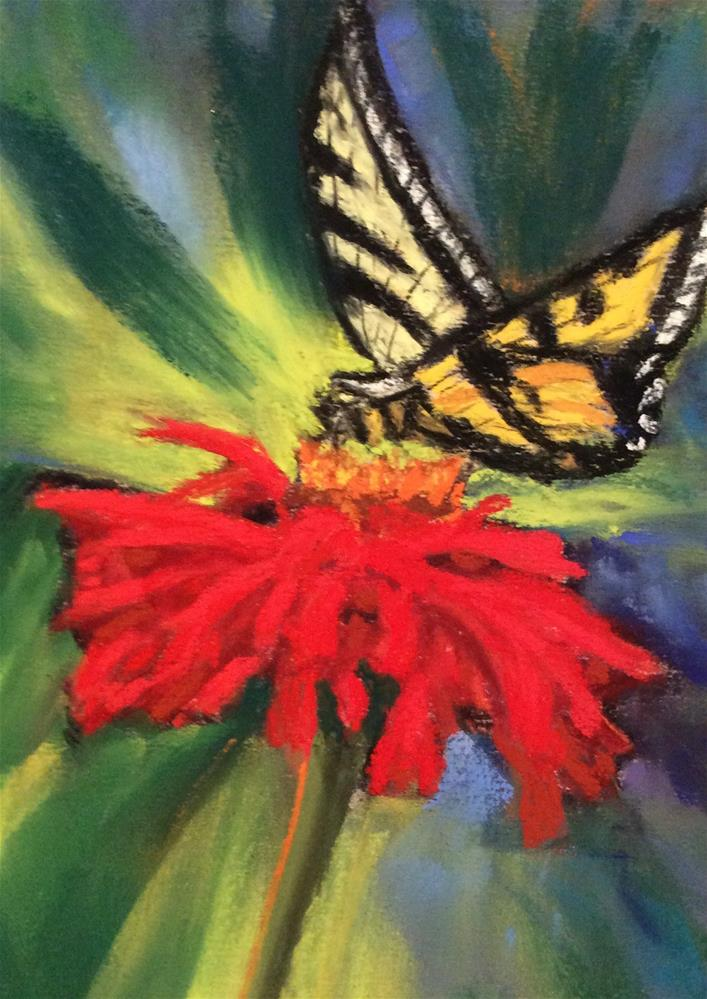 """SWALLOWTAIL"" original fine art by Marti Walker"