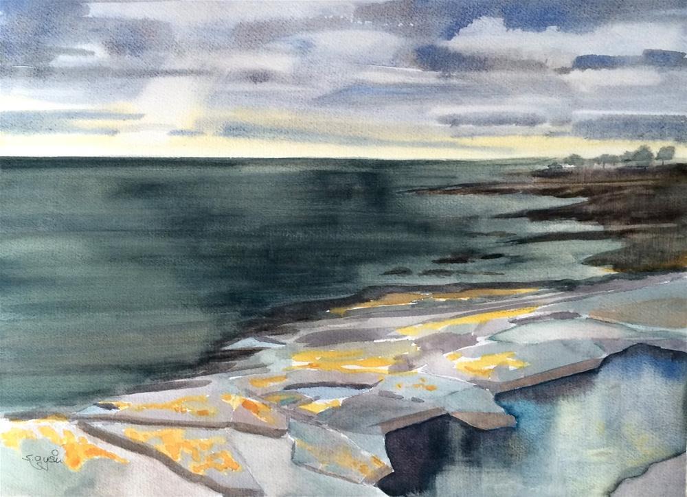 """Skane East Coast"" original fine art by Suzanne Gysin"