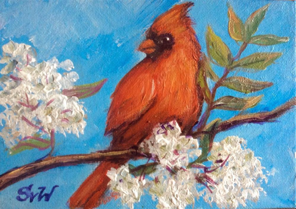 """Red Cardinal bird painting"" original fine art by Sonia von Walter"