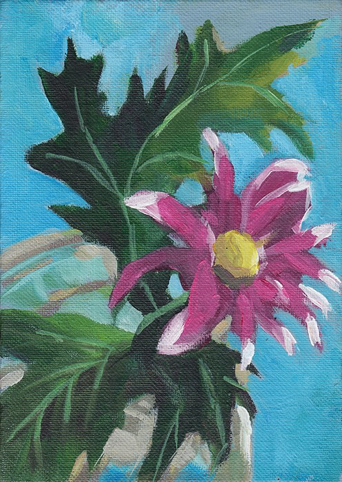 """Pink Chrysanthemum Study"" original fine art by J M Needham"