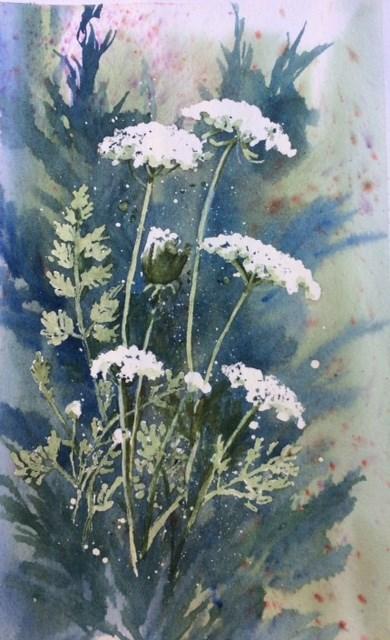 """Queen Anne"" original fine art by Sharyn Fogel"