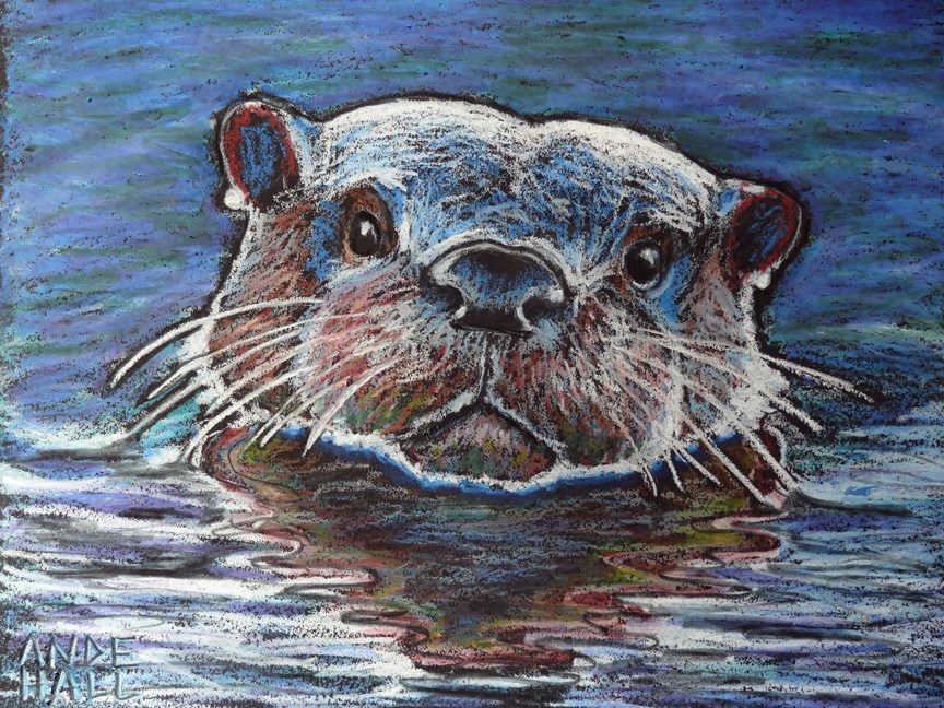 """River Otter Portrait"" original fine art by Ande Hall"
