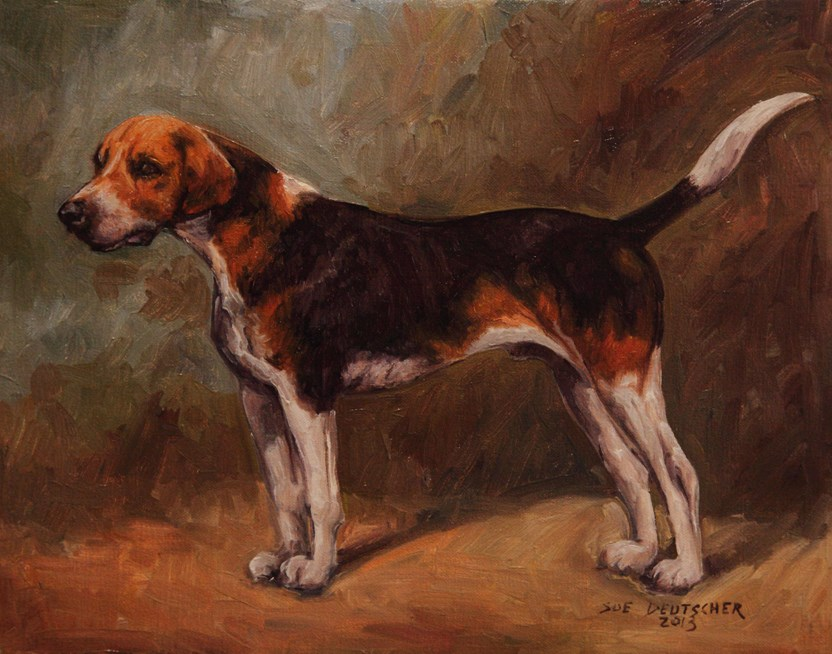 """""""English Foxhound"""" original fine art by Sue Deutscher"""