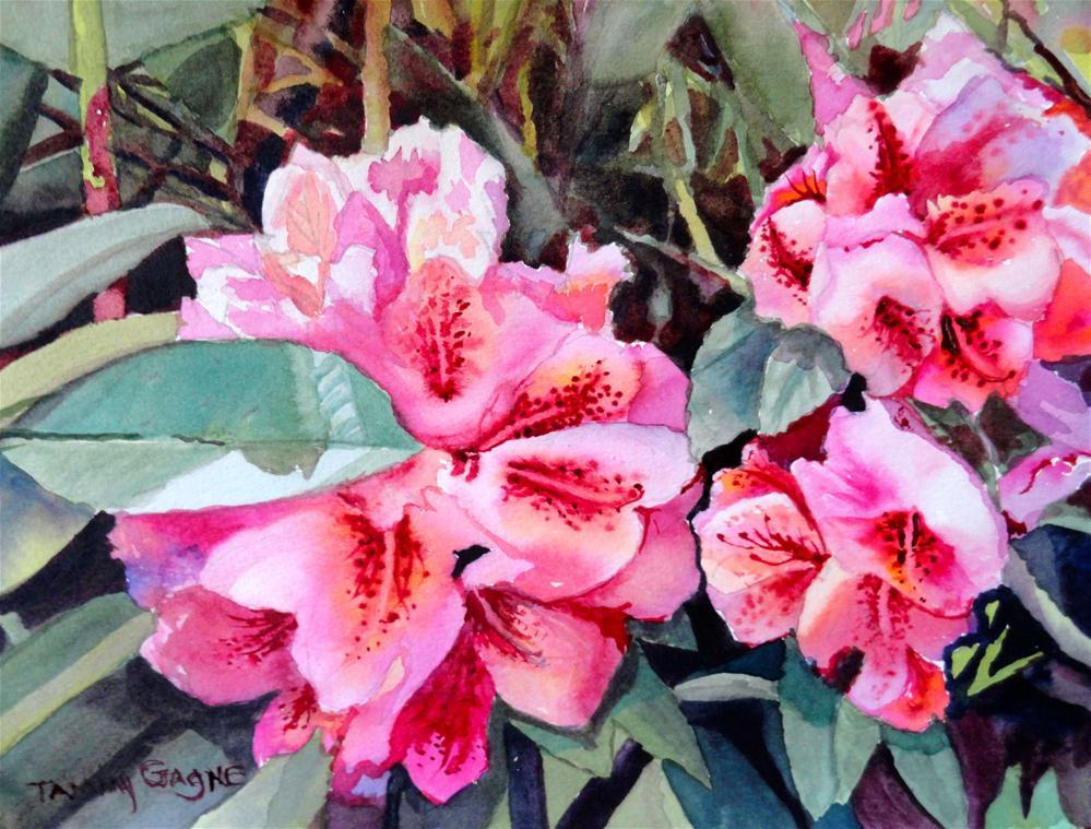 Oregon Rhododendron original fine art by Tammy Gagne