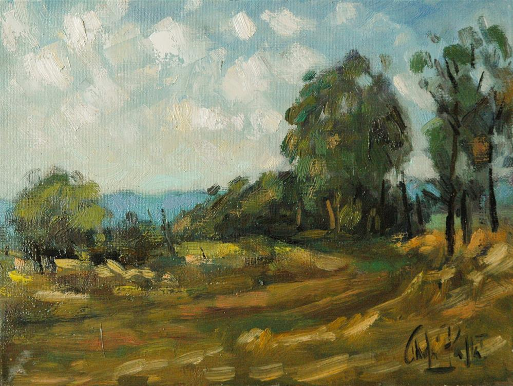 """Landscape in Warm Colours, New South Wales"" original fine art by Andre Pallat"