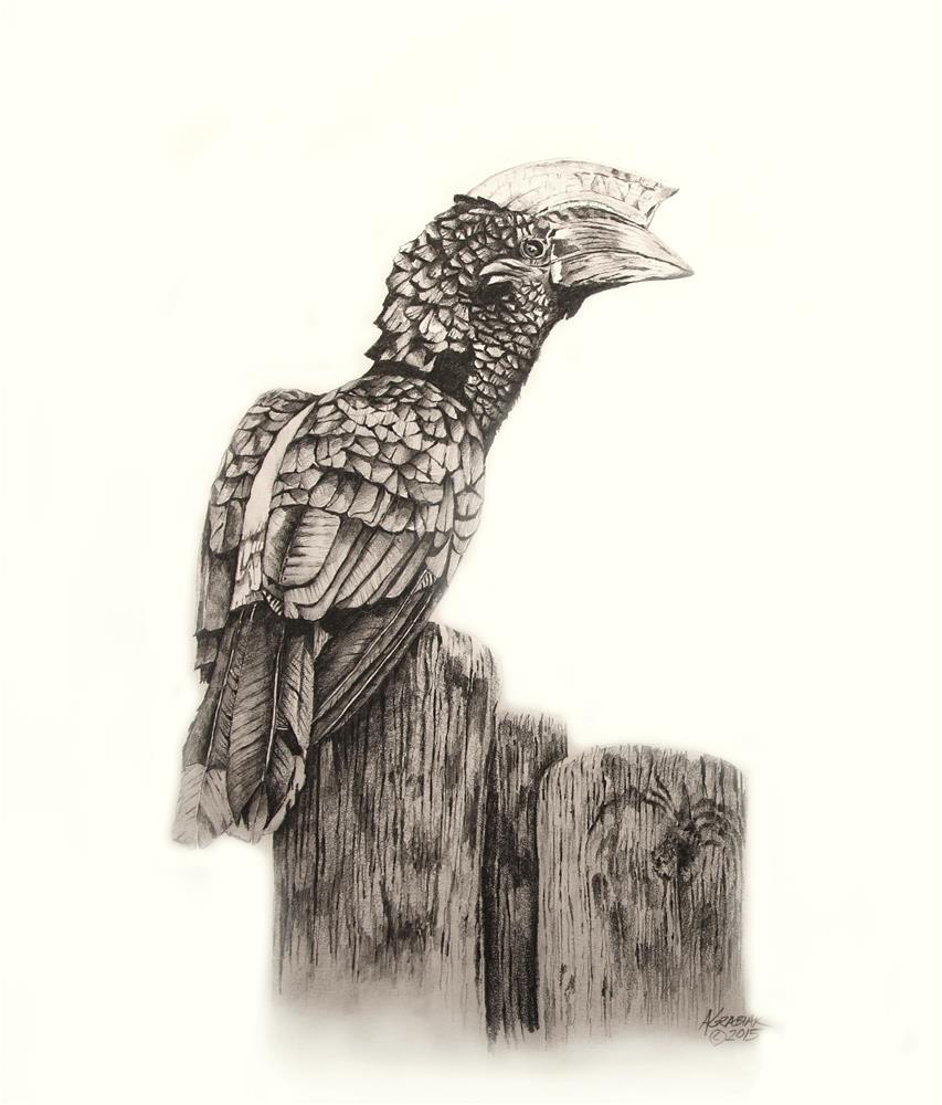 """Silvery-cheeked Hornbill"" original fine art by Aaron Grabiak"