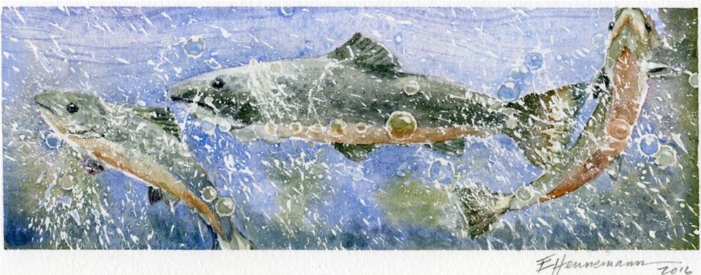 """Three Salmon | donated to the Atlantic Salmon Federation"" original fine art by Eileen Hennemann"