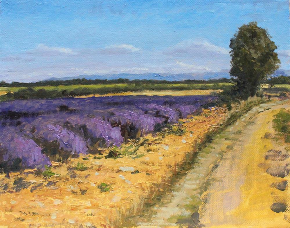 """Lavender field"" original fine art by Marco Vazquez"