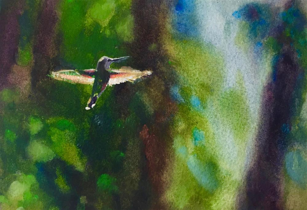 """Hovering"" original fine art by Laurie Maher"