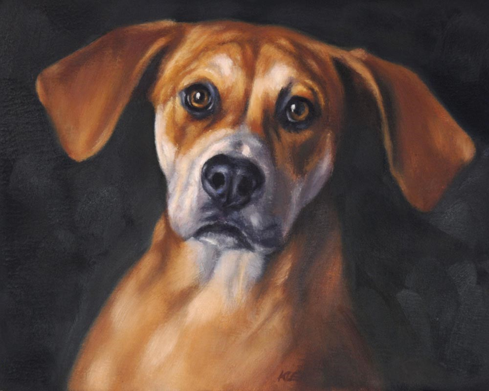 """Hound Dog"" original fine art by Tracy Klett"