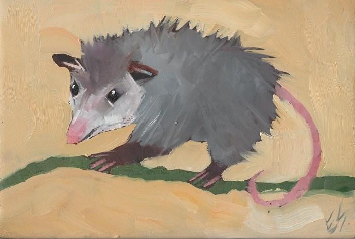 """""""Opossum"""" original fine art by Elizabeth See"""