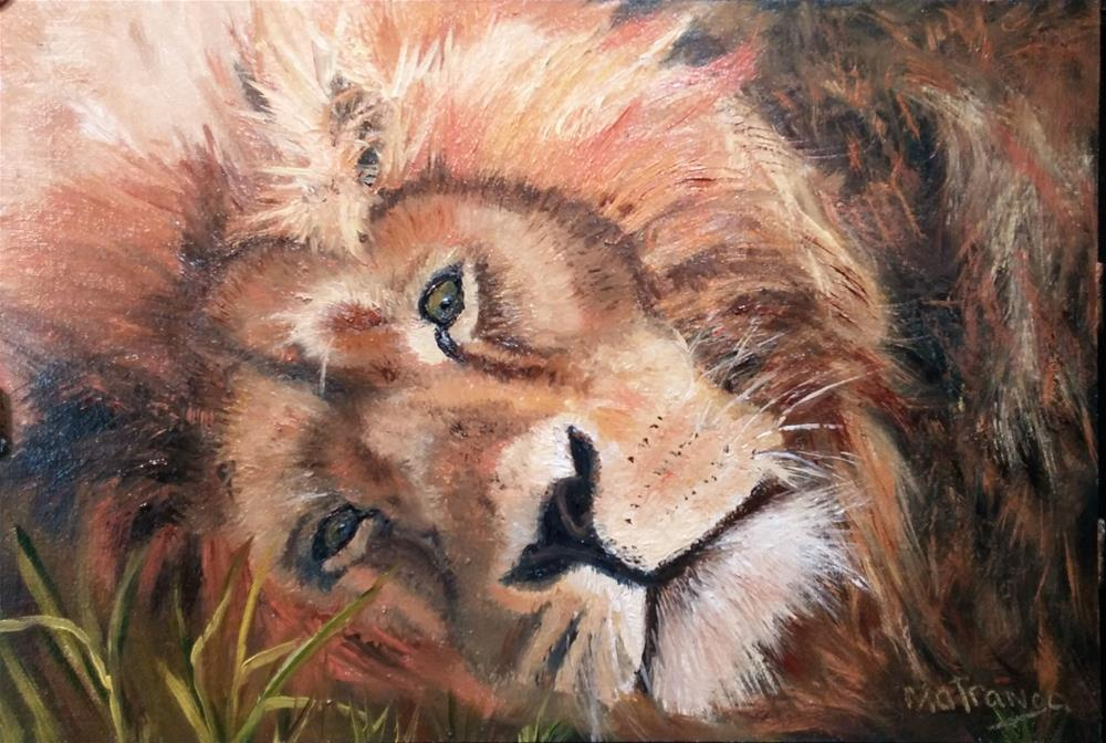 """King at Rest"" original fine art by Patricia Matranga"