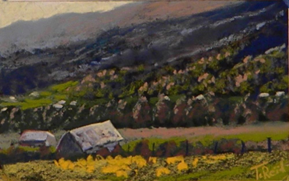 """North Georga Valley"" original fine art by Toby Reid"