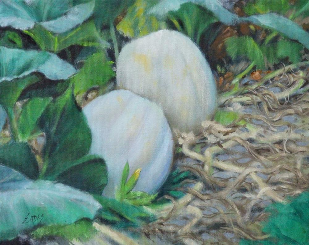 """White Pumpkins in the Patch"" original fine art by Linda Eades Blackburn"