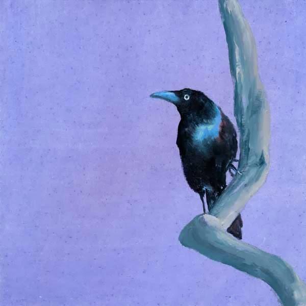 """""""Lone Ranger"""" original fine art by Brenda Ferguson"""