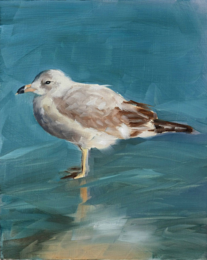 """Seagull Summer"" original fine art by Clair Hartmann"
