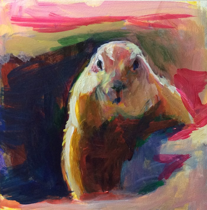 """Colorful Groundhog"" original fine art by Sharon Savitz"