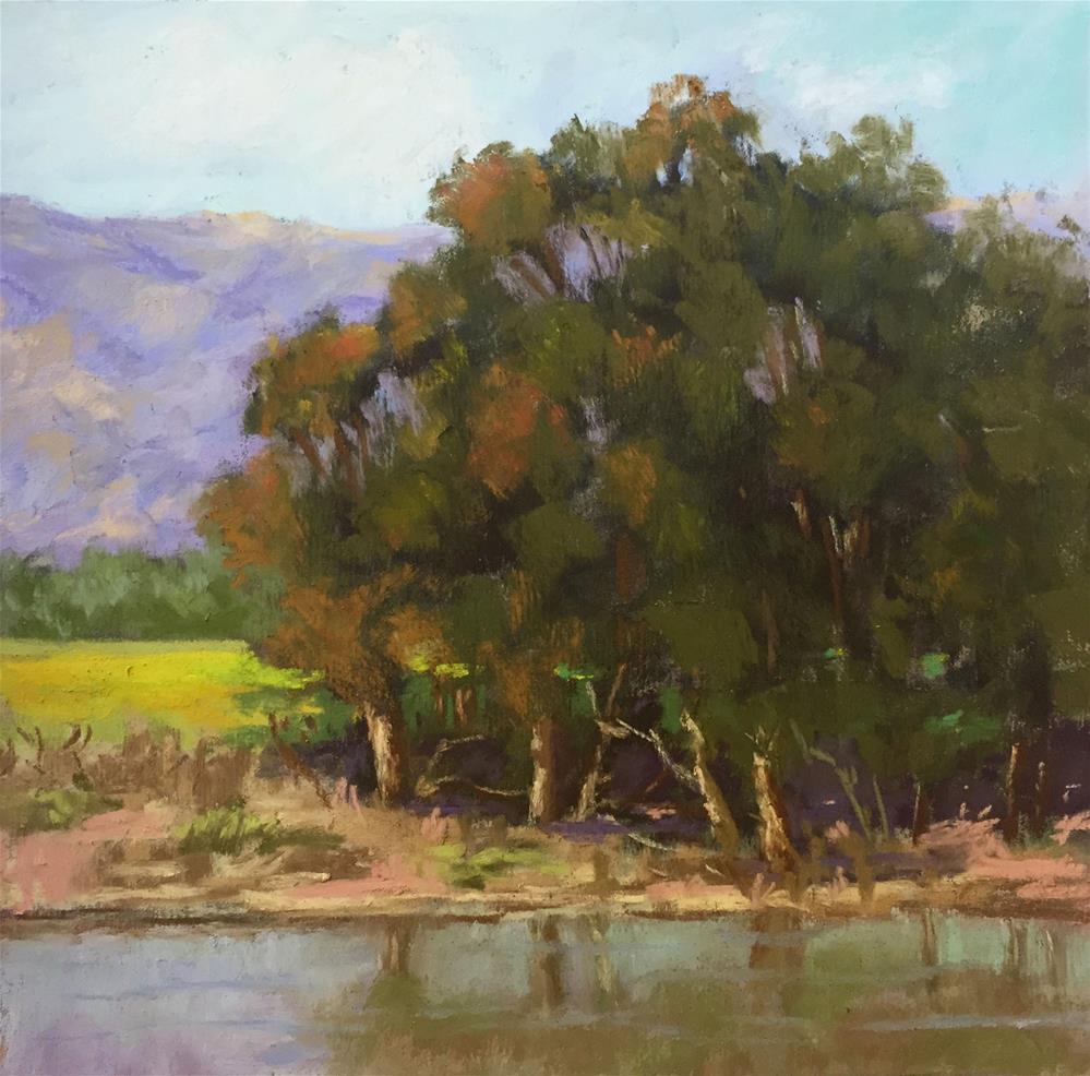 """Water's Edge"" original fine art by Sherri Cassell"