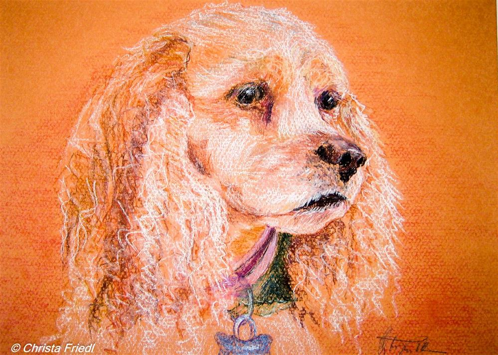 """Sandy"" original fine art by Christa Friedl"