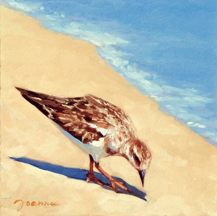 """Sandpiper on the Beach"" original fine art by Joanna Bingham"
