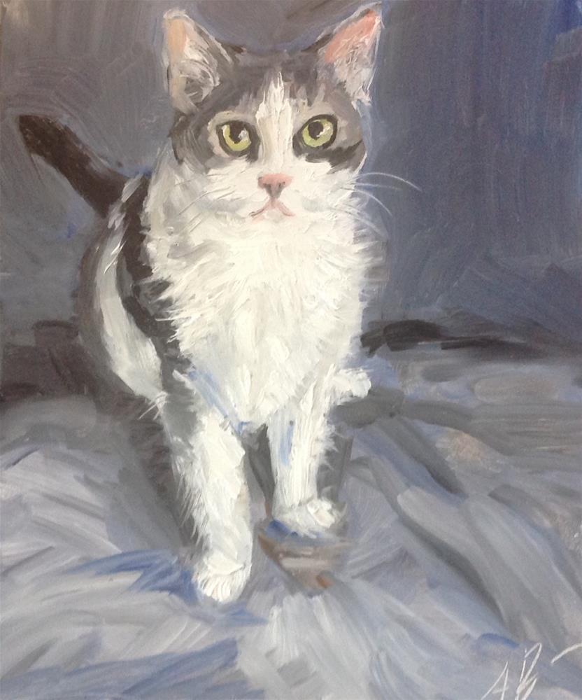 """Cat on Blue Blanket"" original fine art by Annette Balesteri"