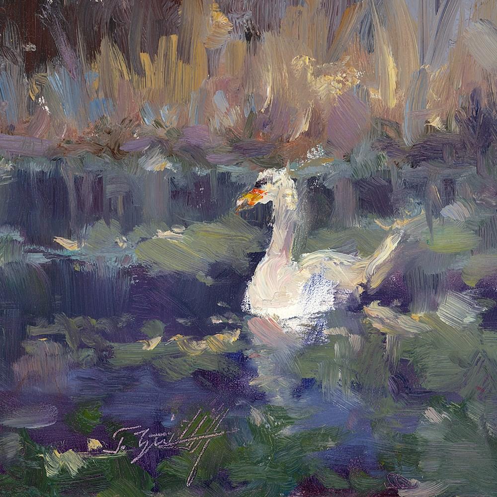 """""""Swan Impression"""" original fine art by Todd Zuithof"""