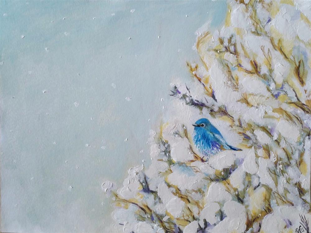 """""""Little Snow BlueBird"""" original fine art by Dana C"""
