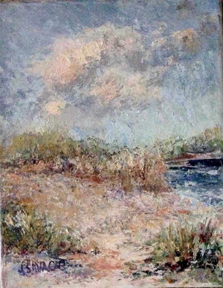 """Beach at Lover's Key"" original fine art by Judy Usavage"