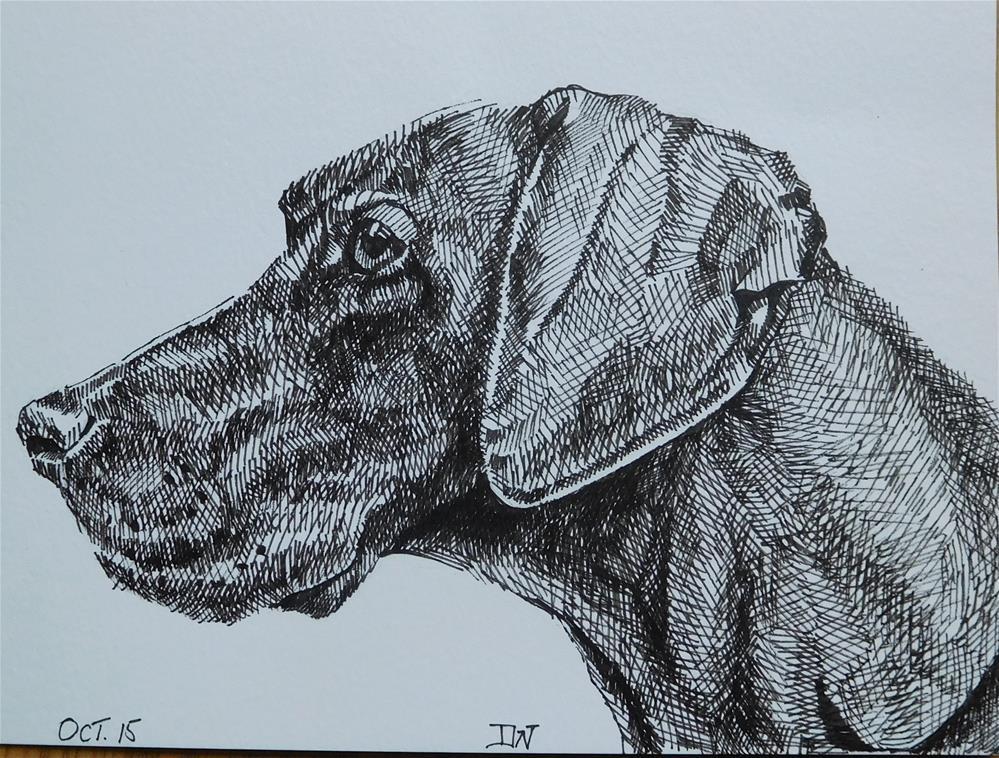 """Dog sketch 1"" original fine art by Daryl West"