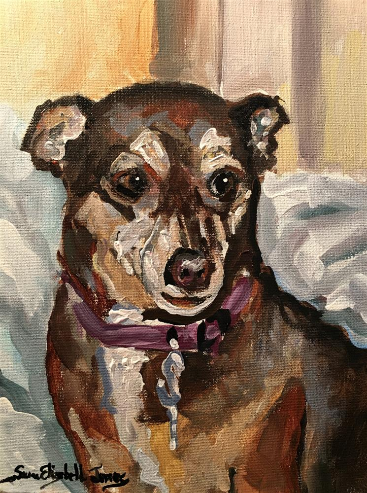 """Peanut"" original fine art by Susan Elizabeth Jones"