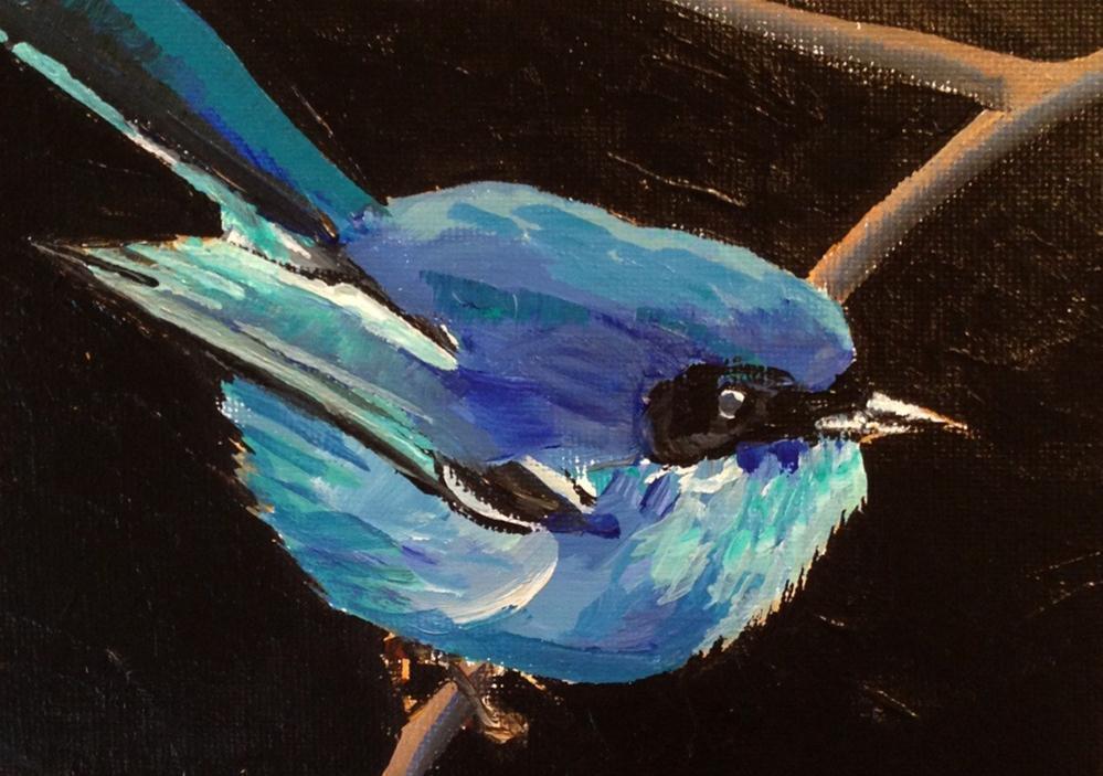 """Blue Fairy Wren"" original fine art by Molly Wright"