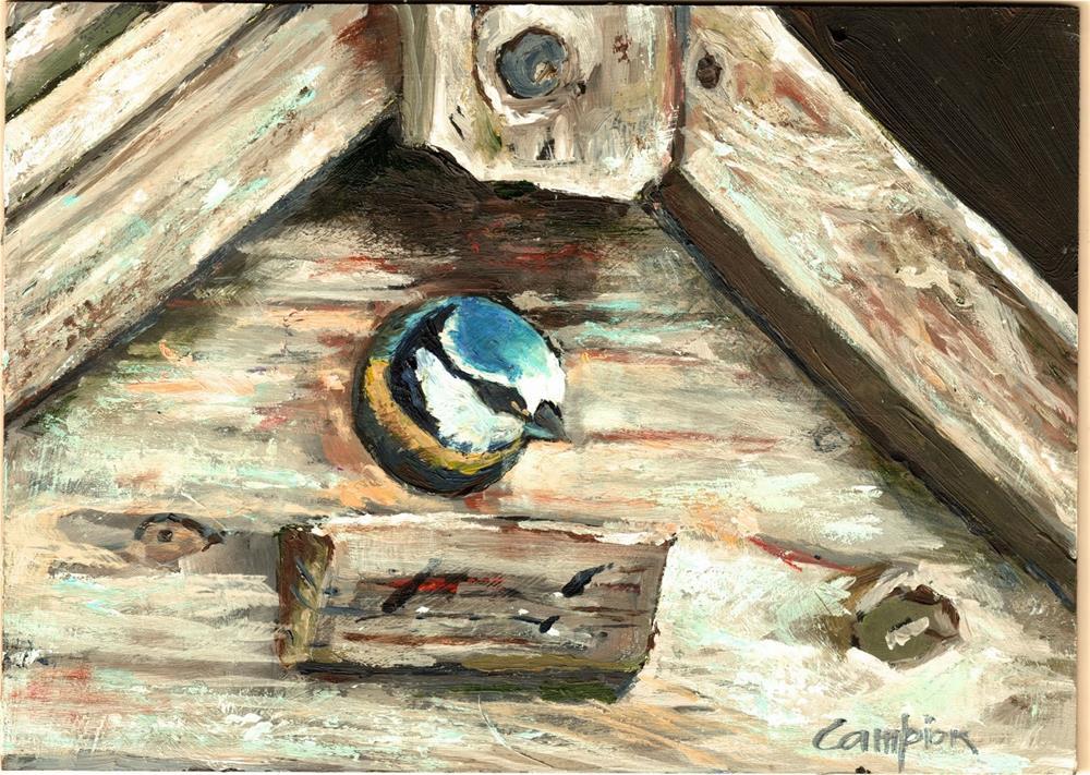 """""""388 Peek-a-Boo"""" original fine art by Diane Campion"""