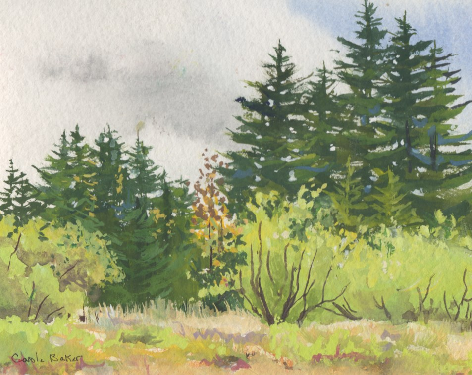 """""""Late Summer"""" original fine art by Carole Baker"""