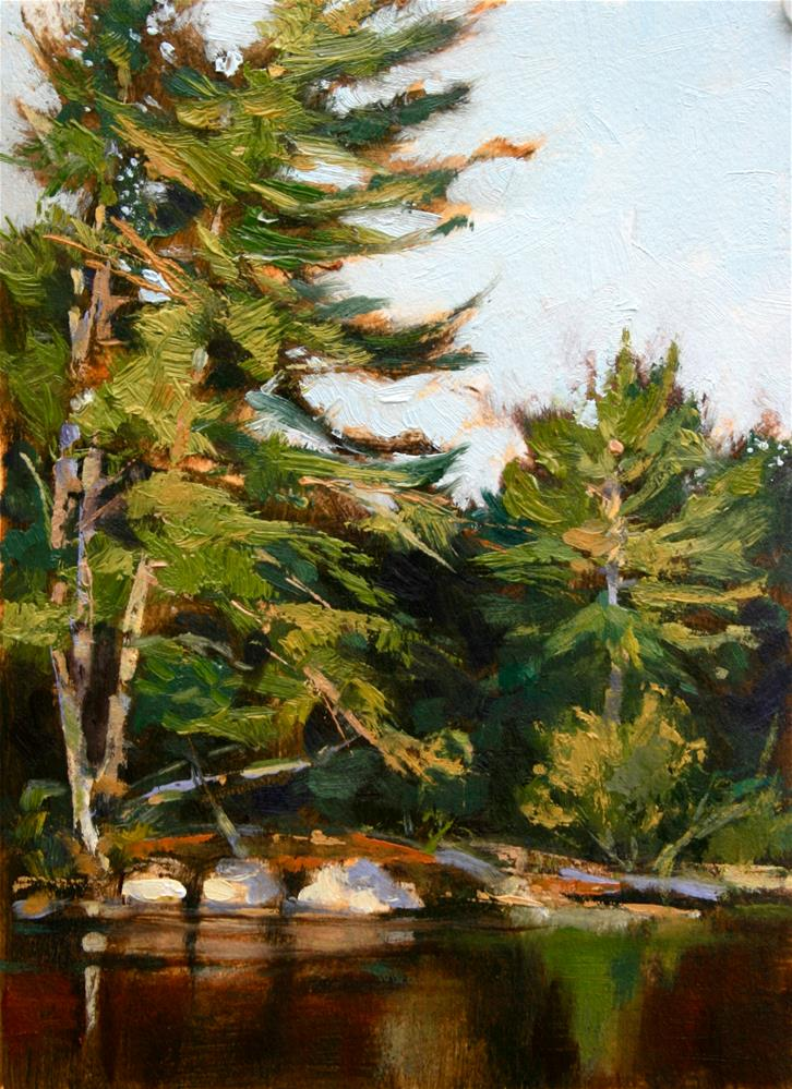 """Harcourt Hemlocks"" original fine art by Jane Robertson"