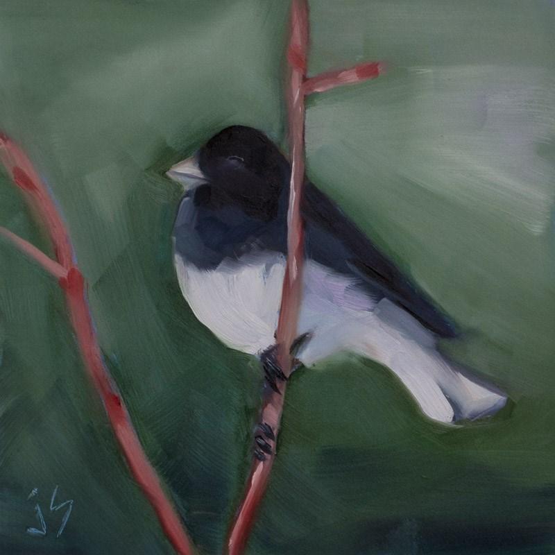 """""""Junco - Black Tie Affair"""" original fine art by Johnna Schelling"""