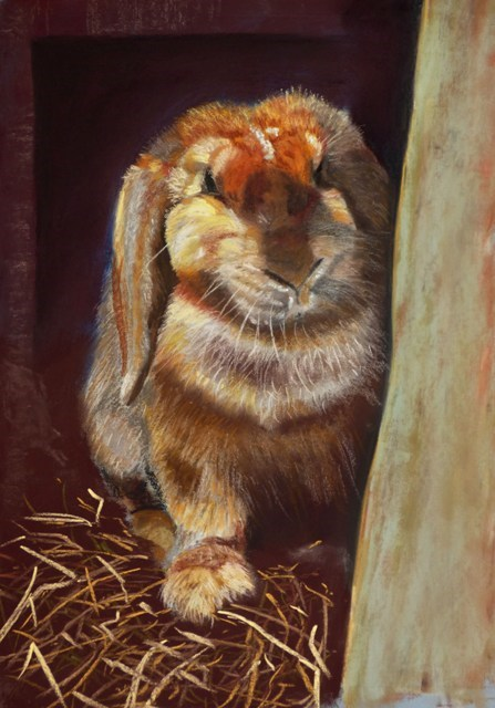 """Easter Bunny"" original fine art by James Humphreys"