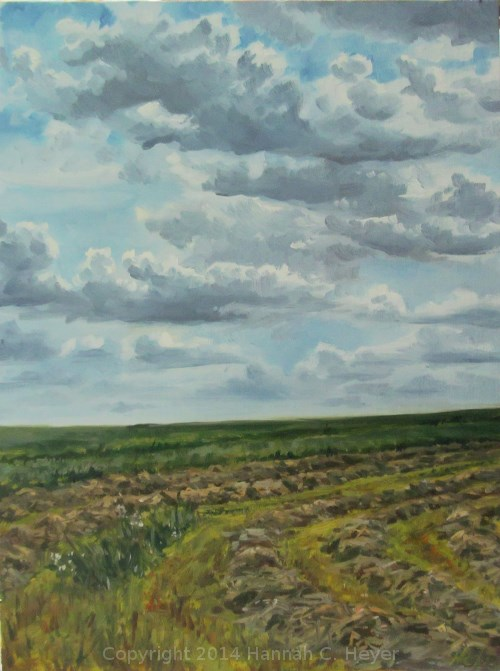 """Drifting Clouds"" original fine art by Hannah C. Heyer"
