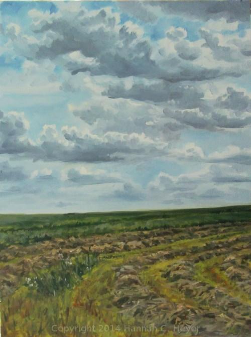 """""""Drifting Clouds"""" original fine art by Hannah C. Heyer"""