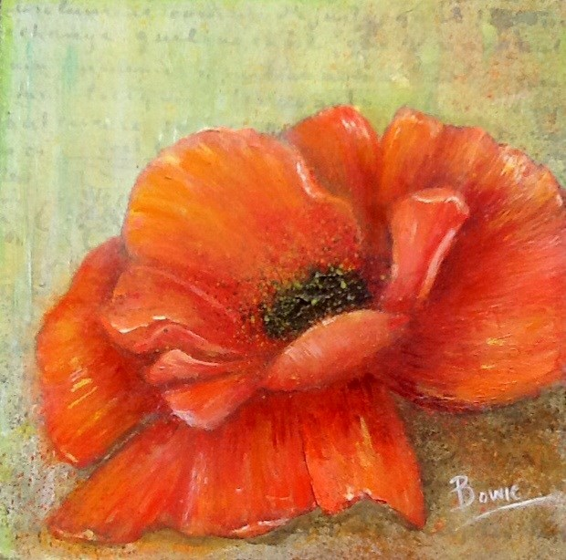 """French Poppy"" original fine art by Maureen Bowie"