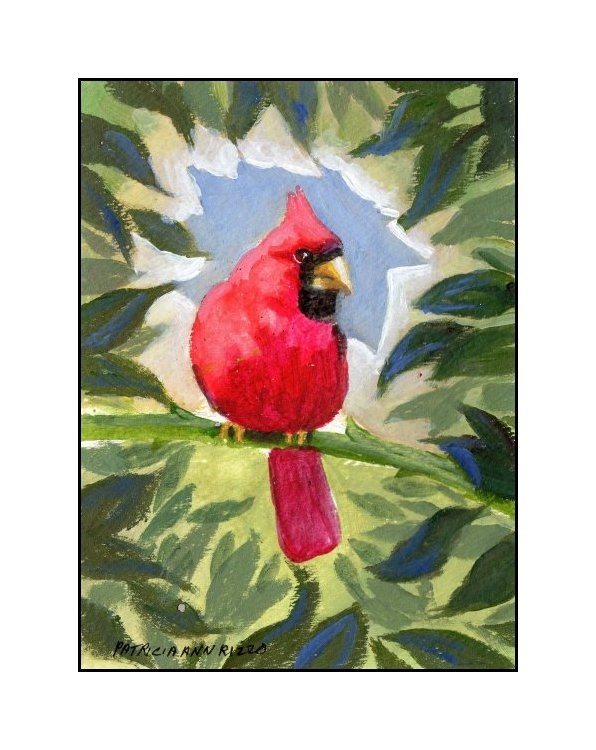 """Bright Red Cardinal"" original fine art by Patricia Ann Rizzo"